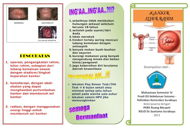 59532001-Leaflet-Kanker-Serviks.pdf